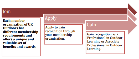 Professional Recognition Process